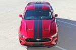 2018 Ford Mustang Racing Stripes STAGE RALLY Vinyl Graphics 7